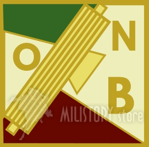 distintivo-gil-avanguardisti-roma_b3